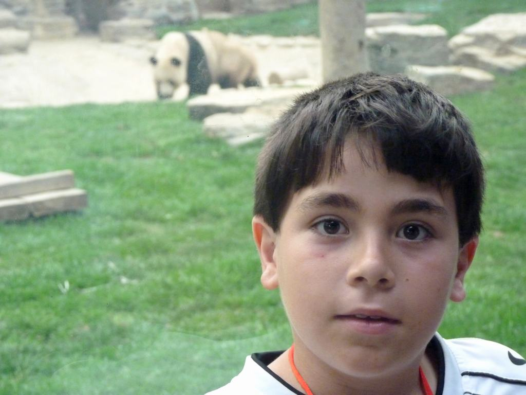 Zoo de Pekín