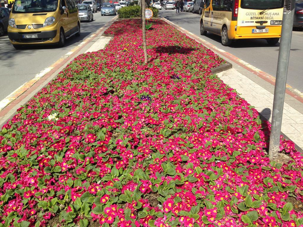 Jardines de Estambul