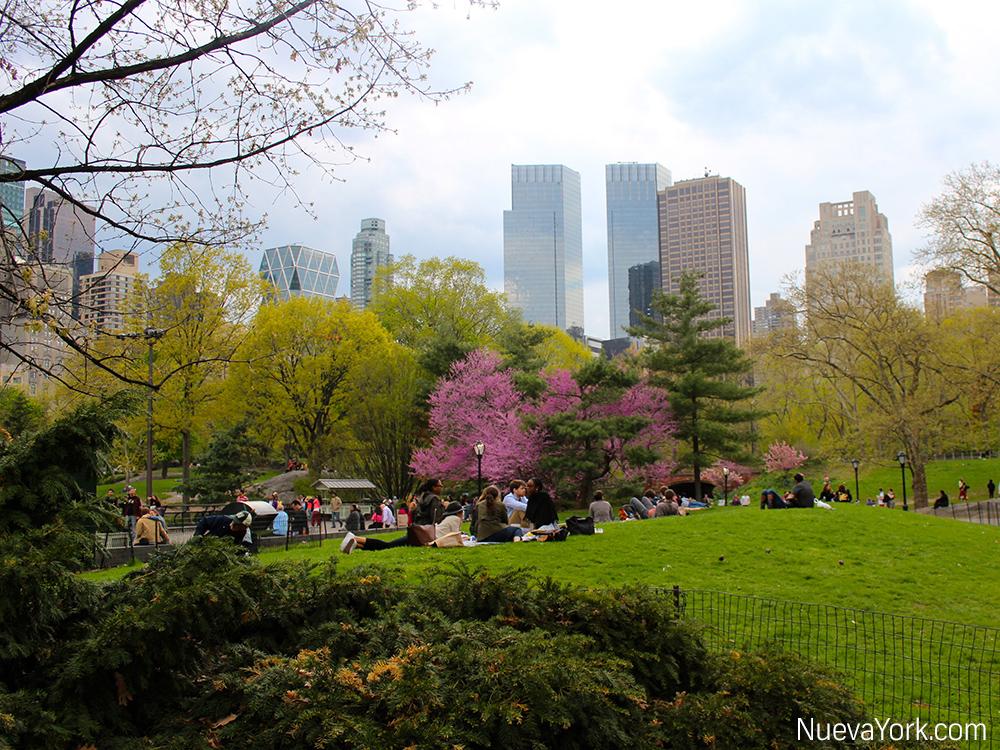 NuevaYork.com - Central Park